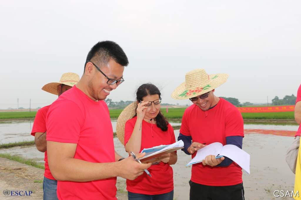 Regional UN training promotes enhanced machinery safety and efficiency for rice production